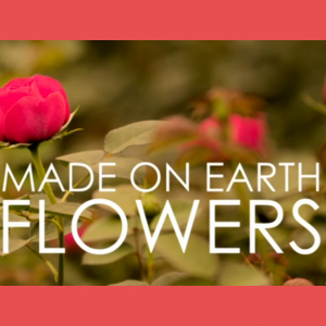 Made on Earth - The flower trade